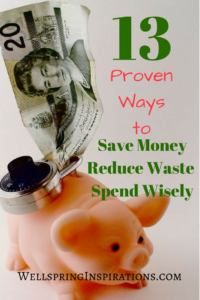 Save Money wellspringinspirations.com
